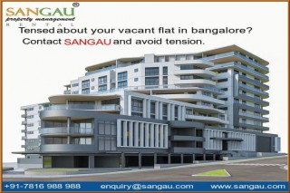 Looking for Apartment for Rent in Bangalore